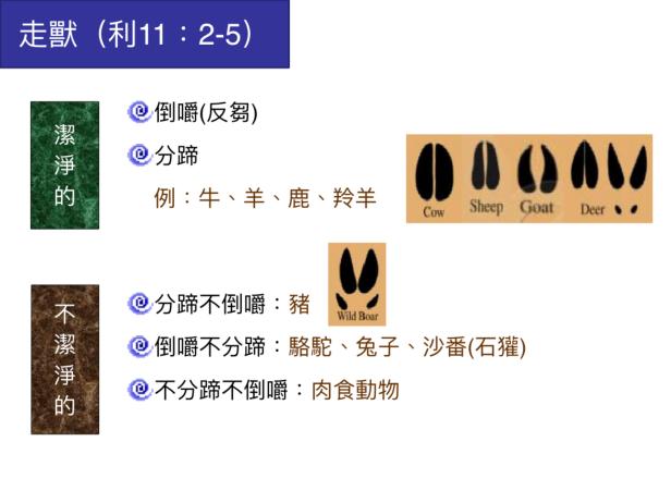 6D8716E4-5BEA-4D05-B0E3-DEDA46CC3634